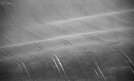 Colline di Ceco Moravia agricoltura Terreni arabili in primavera Fotografie Stock