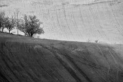 Colline di Ceco Moravia agricoltura Terreni arabili in primavera Fotografia Stock Libera da Diritti