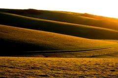 Colline di Englis di rotolamento al tramonto Immagini Stock