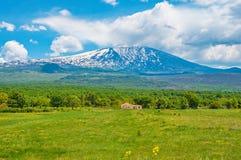 Colline di lava sul fondo del vulcano di Etna Fotografia Stock Libera da Diritti