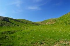 Colline e montagne Immagine Stock