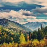 Colline ed alberi di autunno con cielo blu e luce solare Fotografia Stock Libera da Diritti