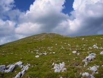 Colline engazonnée par vert avec les pierres blanches Image stock