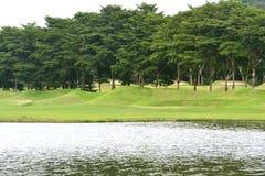 Colline et lacs herbeux d'arbres Images stock