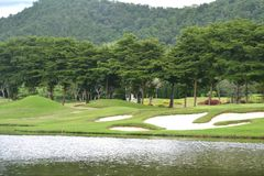 Colline et lacs herbeux d'arbres de montagne Photos libres de droits