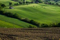 Colline herbeuse un après-midi ensoleillé en Italie image stock