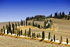Colline intorno a Siena Immagine Stock Libera da Diritti