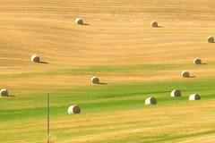 Colline paesaggio, Italia della Toscana Immagini Stock Libere da Diritti