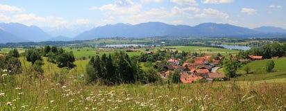 Colline pedemontana bavaresi di vista panoramica, con il prato del wildflower e la La Immagini Stock