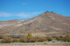 Colline pedemontana delle montagne delle Ande immagine stock
