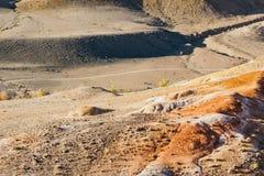 Colline rosse e le montagne nella caduta Fotografie Stock Libere da Diritti