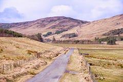 Colline scozzesi, strada della singola pista e campagna Fotografie Stock