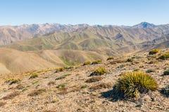 Colline sterili intorno alla valle di Acheronte, alpi del sud, Nuova Zelanda Immagini Stock Libere da Diritti