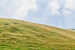 Colline sulla strada di Transalpina, montagne dell'erba verde di Parang Fotografia Stock Libera da Diritti