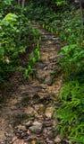 Colline Thaïlande orientale droite de manière de promenade Image libre de droits