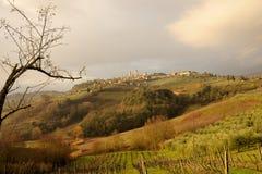 Colline toscane Fotografie Stock Libere da Diritti