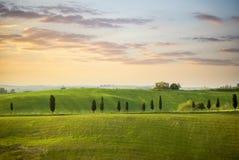 Colline toscane avec la rangée de la ruine d'arbres et de ferme de cyprès au coucher du soleil Horizontal toscan La Toscane, Ital images libres de droits