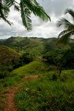 Colline in una foresta pluviale tropicale Fotografia Stock Libera da Diritti