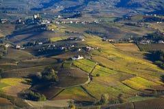 Colline variopinte di autunno di Langa Piemonte Italia Immagine Stock