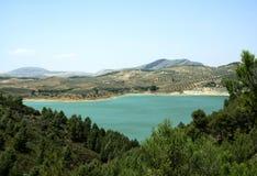 Colline verde oliva, Andalusia, Spagna Fotografia Stock Libera da Diritti