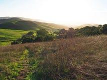 Colline verdi della contea di Sonoma immagini stock libere da diritti