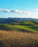 Colline verdi della contea di Sonoma immagine stock libera da diritti