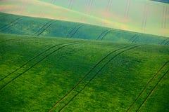 Colline verdi della molla Terreni arabili in Ceco Moravia Immagine Stock Libera da Diritti