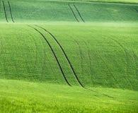 Colline verdi della molla Terreni arabili in Ceco Moravia Fotografie Stock Libere da Diritti