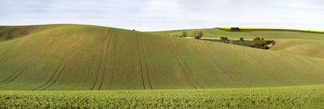 Colline verdi della molla Terreni arabili in Ceco Moravia Fotografia Stock Libera da Diritti