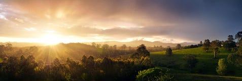 Colline verdi di rotolamento fertile a Neerim del sud, Gippsland ad ovest, Victoria, Australia Immagini Stock