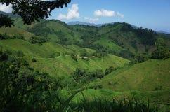 Colline verdi di Sierra Nevada, Colombia Fotografia Stock