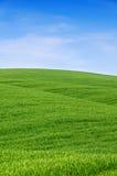 Colline verdi e cielo blu Immagini Stock