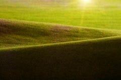 Colline verdi ed alba. Immagini Stock