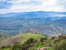 Colline verdi nel fiume di Zarga della valle in Giordania Fotografia Stock Libera da Diritti