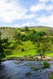 Colline verdi, pietre facenti un passo vicino al Na di punta del distretto tuffato fiume Immagini Stock