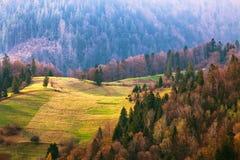Colline verdi in valle della montagna Paesaggio della sorgente Immagini Stock