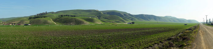 Colline verte en Californie du sud images libres de droits