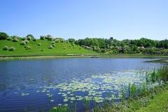 Colline verte près du lac Image libre de droits
