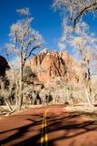 Colline Zion National Park Desert dell'alta montagna di alba della strada Fotografia Stock