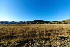 Collines, Akaroa, Nouvelle-Zélande Image stock