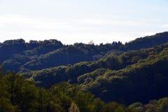 Collines boisées contre un ciel clair Photo stock
