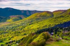 Collines boisées des montagnes carpathiennes au printemps images libres de droits