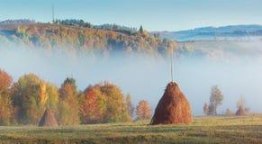 Collines carpathiennes de matin avec le brouillard et les meules de foin photos libres de droits