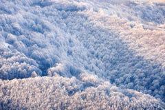 Collines congelées de montagnes carpathiennes Photographie stock libre de droits