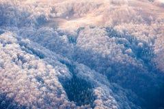 Collines congelées de montagnes carpathiennes Photo libre de droits