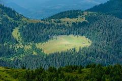 Collines de montagnes carpathiennes photographie stock