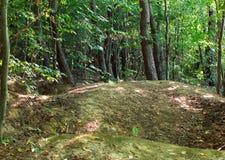 Collines de terre dans la forêt Photographie stock libre de droits