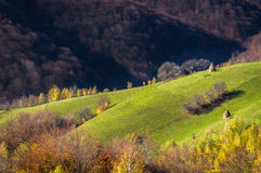 Collines en automne Photo stock