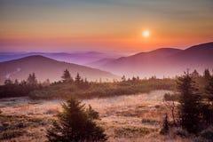 Collines en brume de matin images stock