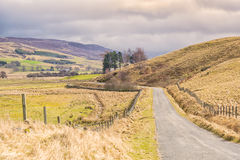 Collines et campagne écossaises Photo libre de droits